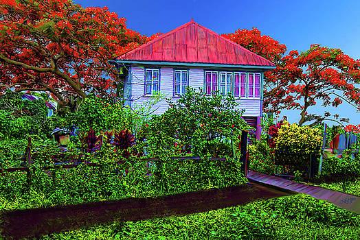 Old House Guyana 1f by James  Mingo