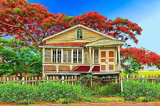 Old House Guyana 1g by James  Mingo