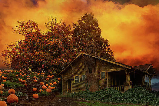 Old House Pumpkin Patch in Oregon by David Gn