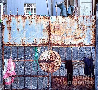 Old Iron Gate Still Life by Yali Shi