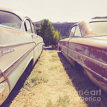 Edward Fielding - Old Junkyard Cars Chevy and Ford Utah
