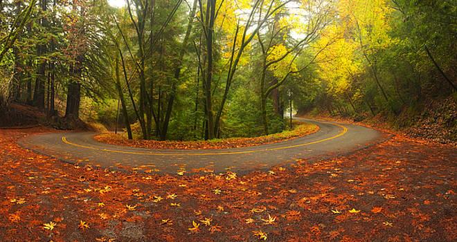 Old La Honda in Fall by Matt Tilghman