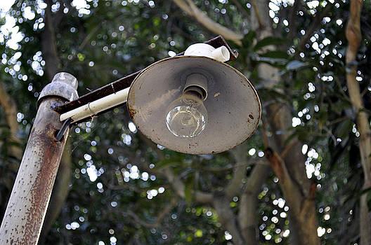Bliss Of Art - old lamp post