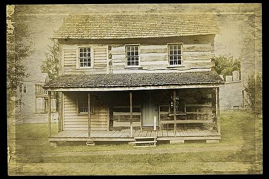 Old Log Cabin by Joan Reese