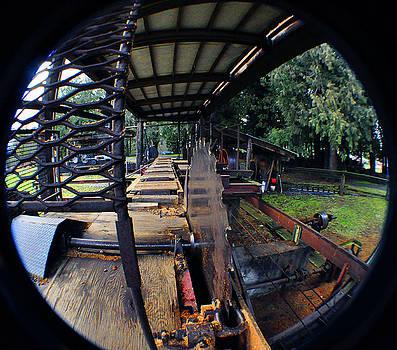 Clayton Bruster - Old Logging Saw