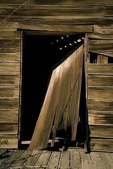 Old Mill Door by Roland Peachie