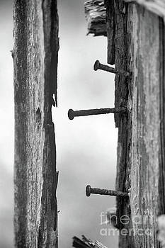 Old Nails by Kristi Beers-Mason