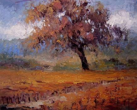 Old oak tree in the vineyard by R W Goetting