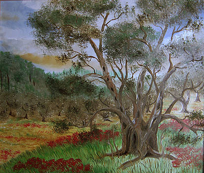Old olive tree  by Anna Witkowska