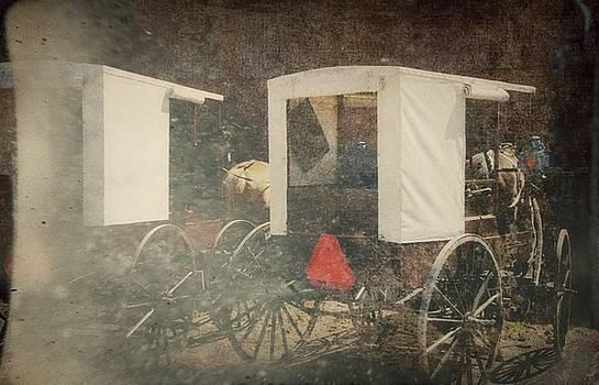 Old Order Amish Buggies by Stephanie Calhoun