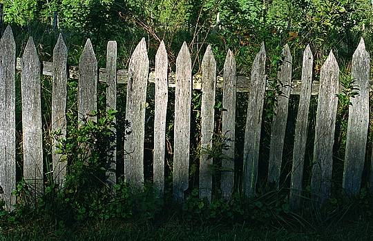 Old Picket Fence by Rodney Lee Williams