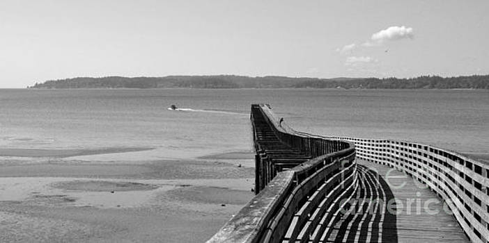 Old Pier in Indianola WA by Tanya Searcy