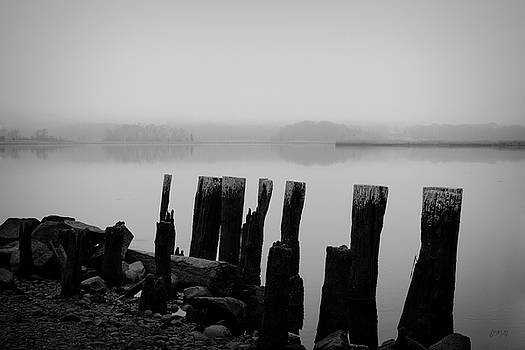Dave Gordon - Old Pilings - Broad Cove Inlet