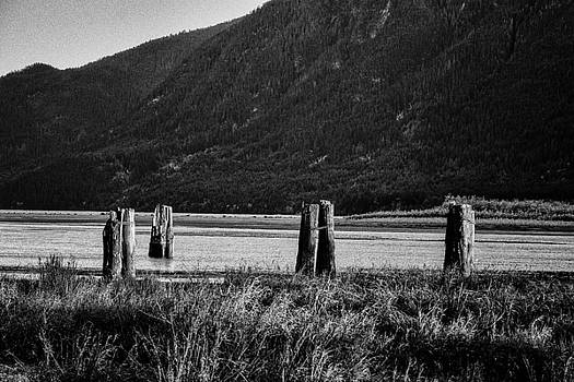 John McArthur - Old Pilings