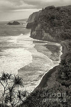 Old Pololu by Aaron Whittemore