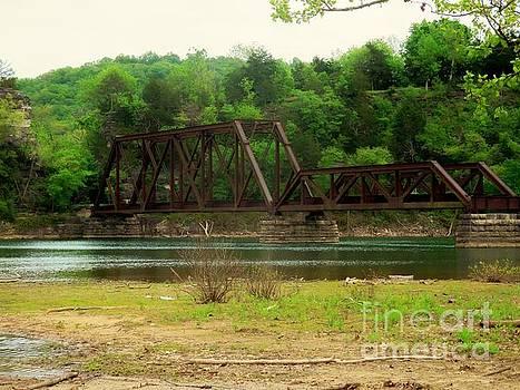 Old Railroad Bridge by Sandra McClure