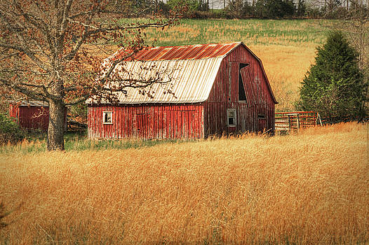 Tamyra Ayles - Old Red Barn