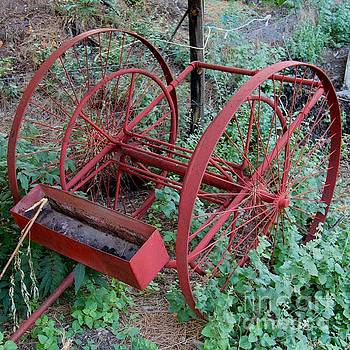 Old Red Cart by Anthony Jones