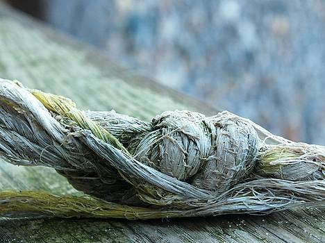 Old Rope by Emma Manners
