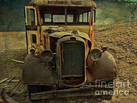 Old Rusted Wrecked Bus  by Liane Wright