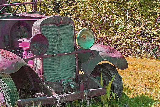 Old Rusty Truck C1002 by Mary Gaines