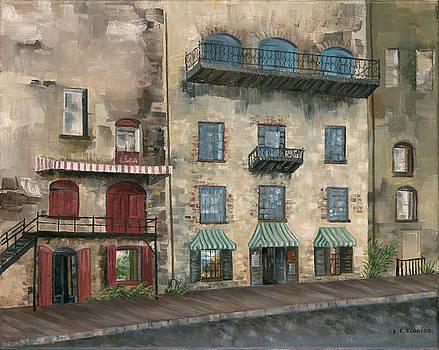 Old Savannah by E E Scanlon