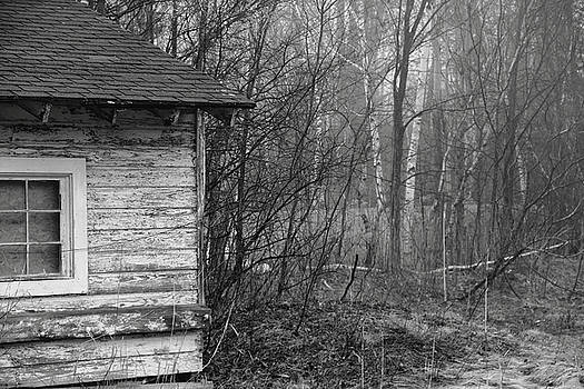 Old shack in the fog by Brian Pflanz