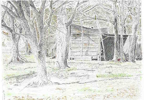 Old Shack by Sal Lomick