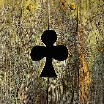 BERNARD JAUBERT - Old shutter in wood