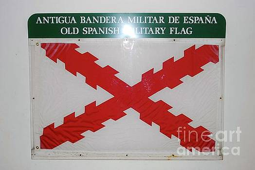 Gary Wonning - Old Spanish Military flag
