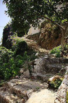 Old steps up the hillside by Deborah Benbrook