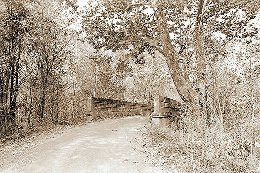 Gary Wonning - Old Stone Bridge across creek