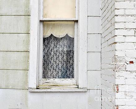 Old Texas Farmhouse Window by Catherine Sherman
