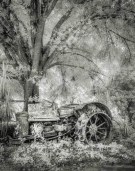 Steve Zimic - Old Tractor