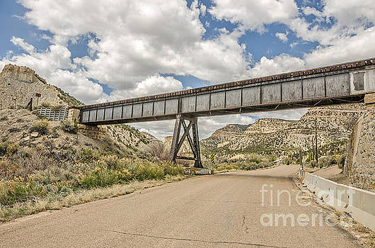Old Train Trestle in Castle Country by Sue Smith