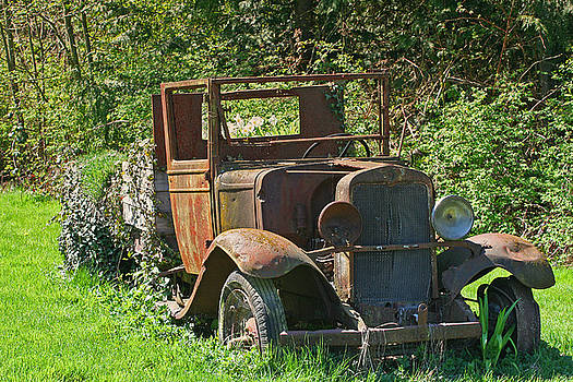 Old Truck II C1002 by Mary Gaines
