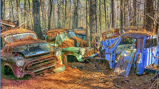 Old Trucks by Dennis Dugan