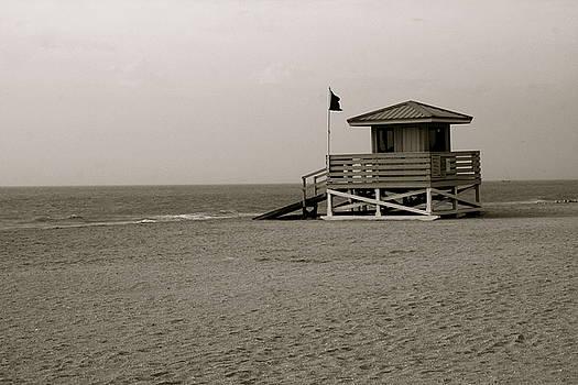 Bonnes Eyes Fine Art Photography - Old Venice Beach