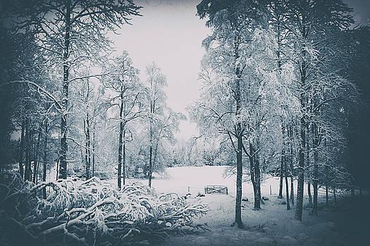 Old Vintage Winter Landscape by Christian Lagereek