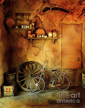 Old Warehouse Bicycle by Craig J Satterlee