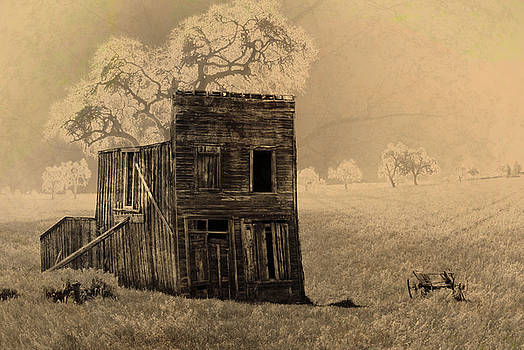 Old West Building by Ronald Hoggard