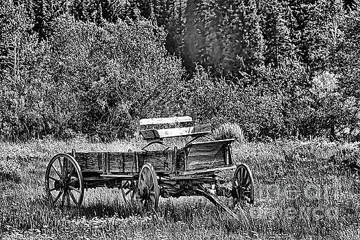 Old West Dependable by Stephen Schwiesow