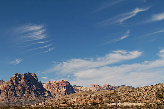 Old West Poles by Carl Wilkerson