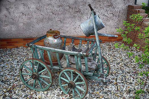 Old wheelbarrow with milk churn by Eva-Maria Di Bella
