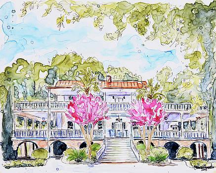 Old Wide Awake Plantation by Shaina Stinard