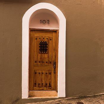 Old Wooden Door 102 by Thomas Pettengill