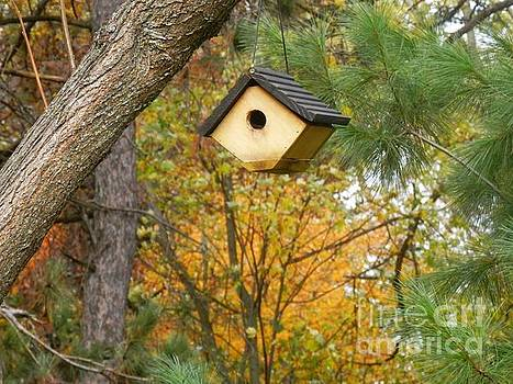 Old Yellow Birdhouse by William Presley