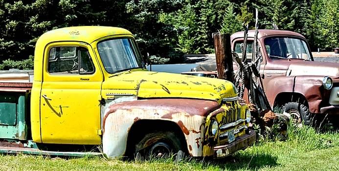 Old Yellow Farm Truck by Amy McDaniel