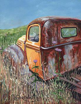 Old yellow by Timithy L Gordon