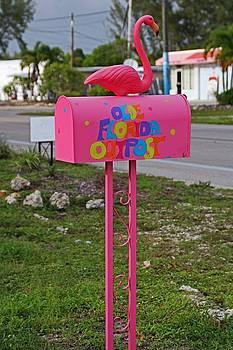Olde Florida Outpost Mailbox by Michiale Schneider